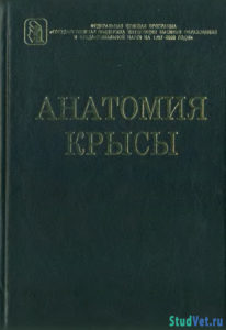 Анатомия крысы - Ноздрачев А. Д