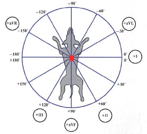 Формирование шестиосевой системы координат (по Бейли)