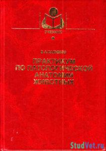 Салимов В.А. - Практикум по патологической анатомии животных