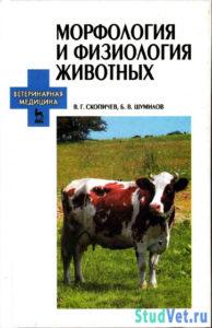 Морфология и физиология животных - Скопичев В.Г., Шумилов В.Б.