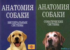 Анатомия собаки. Висцеральные и соматические системы - Слесаренко Н.А.