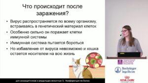 Фотченкова А. С. - Вирус иммунодефицита кошек